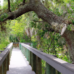 Boardwalk at Village at Riverwalk Residential 55+ Community in North Port Florida